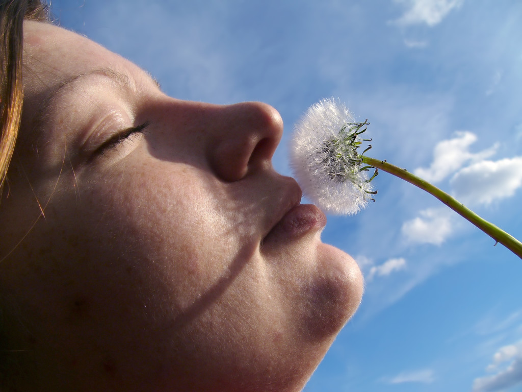 Dandelions, like personality traits, can be seen as lovely or a nuisance, depending on the context. Photo: Len-k-a, Sxc.hu